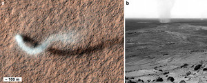 Dust Devils on Earth and Mars
