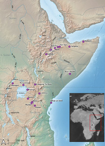 Eastern African Stone Age