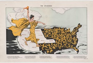 The Woman Suffrage Movement in the United States