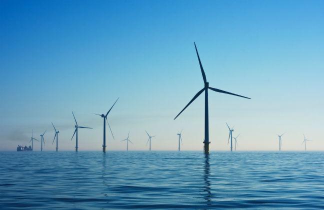 Environmental Sustainability and Sustainable Development
