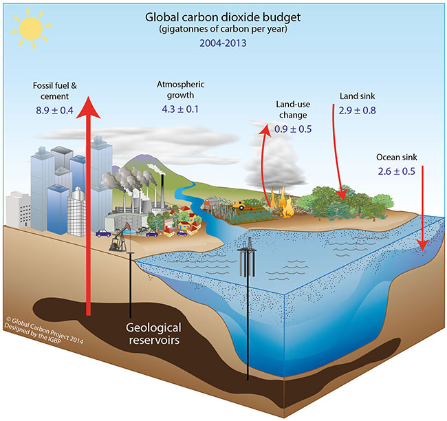 climate change and carbon cycle feedbacks oxford research climate change and carbon cycle feedbacks oxford research encyclopedias
